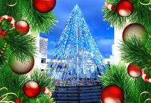 Eco Albero Natale 2015 - Veglie