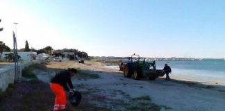 Pulizia Spiagge, Foto d'archivio