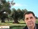Sindaco di Veglie, dott. Claudio Paladini